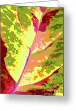Abstract Summer's End Greeting Card