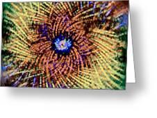 Abstract Swirl 01 Greeting Card