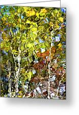 Abstract Tree Reflection Greeting Card