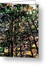 Abstract Trees 691 Greeting Card