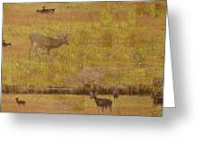 Abstract With White Tailed Deer Greeting Card