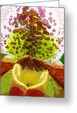 Abstracted Orchid Greeting Card