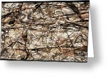 Abstraction 2339 Greeting Card
