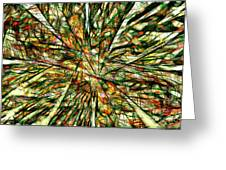 Abstraction 3099 Greeting Card