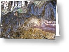 Abstraction In Color And Texture From Wet Rock Greeting Card