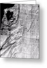 Abstraction Of Nature No. 2 Greeting Card