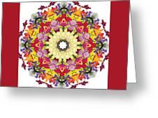 Abundantly Colorful Orchid Mandala Greeting Card