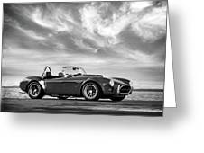 Ac Shelby Cobra Greeting Card