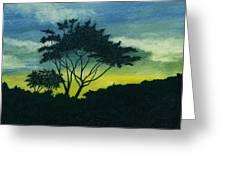 Acacia Tree Greeting Card