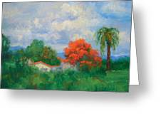 Acacias And Red Roofs Greeting Card