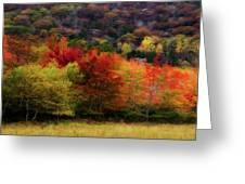 Acadia Colors Greeting Card