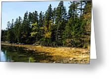 Acadia Cove Greeting Card