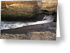 Acadia National Park - Maine Usa Thunder Hole Greeting Card