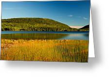 Acadia, National Park Shoreline And Marsh Maine Greeting Card