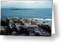 Acadia Park Maine Coast Greeting Card