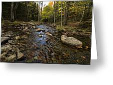 Acadia Waterscape Greeting Card