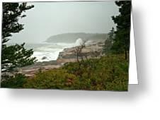 Acadian Storm Greeting Card