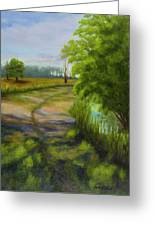 Ace Basin Pathway Greeting Card
