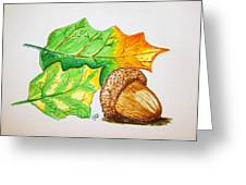 Acorn And Leaves Greeting Card
