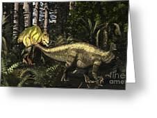 Acrocanthosaurus Hunting Tenontosaurus Greeting Card