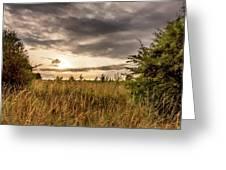 Across Golden Grass Greeting Card