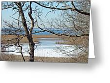 Across The Marsh To Woodneck Beach - Cape Cod Greeting Card