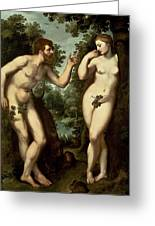 Adam And Eve Greeting Card by Peter Paul Rubens