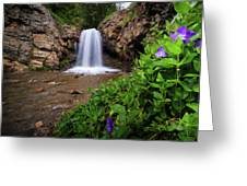 Adams Canyon Lower Falls Spring Greeting Card