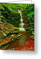 Adams Falls Portrait Greeting Card