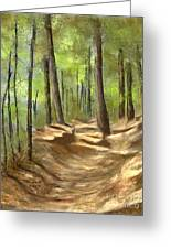 Adirondack Hiking Trails Greeting Card