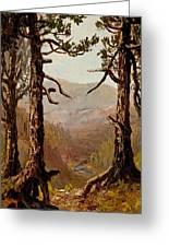 Adirondack Landscape Greeting Card