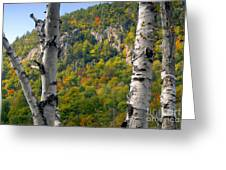Adirondack Mountains New York Greeting Card