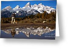 Admiring The Teton Sights Greeting Card