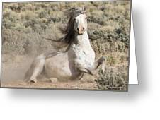 Adobe Wind Greeting Card