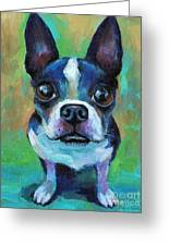 Adorable Boston Terrier Dog Greeting Card