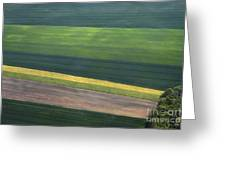 Aerial Abstract Greeting Card