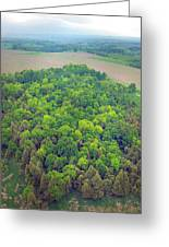 Aerial Forest Greeting Card