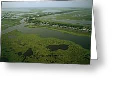 Aerial View Of Delacroix Island Greeting Card by Medford Taylor