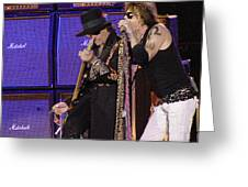 Aerosmith - Steven Tyler -dsc00015 Greeting Card