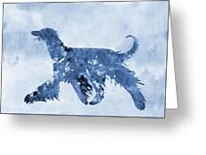 Afghan Hound-blue Greeting Card