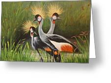 Afrian Crowned Cranes Greeting Card