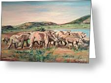Africa Greeting Card by Rosemary Kavanagh