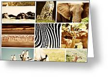 African Animals Safari Collage  Greeting Card by Anna Om