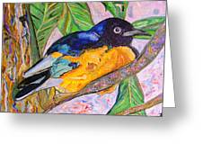 African Blue Eared Starling Greeting Card