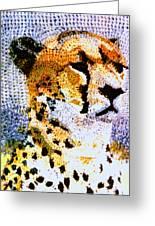 African Cheetah Greeting Card