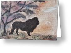 African Landscape Lion And Banya Tree At Watering Hole With Mountain And Sunset Grasses Shrubs Safar Greeting Card