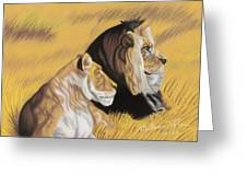 African Royalty Greeting Card