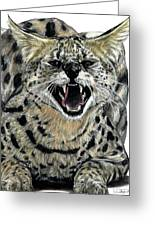 African Serval Greeting Card