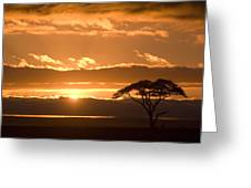 African Sunrise Greeting Card