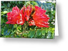 African Tulip Flower #2 Greeting Card